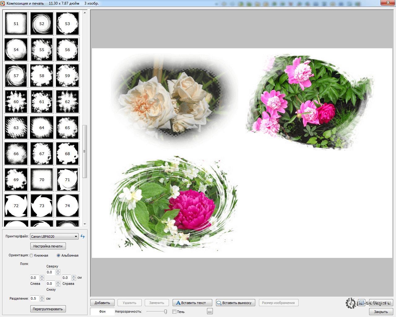 Faststone Image Viewer - композиция и печать