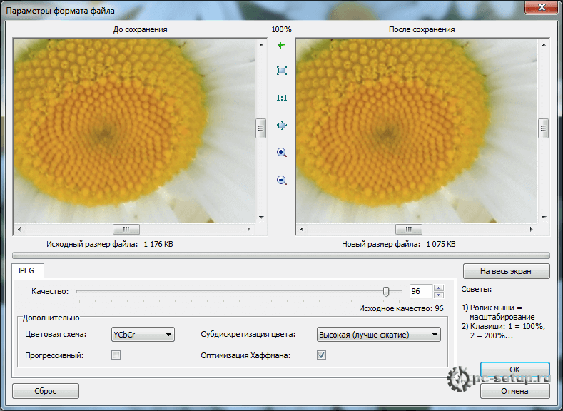 Faststone Image Viewer - параметры формата файла